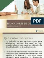 INDICADORES DE DESEMPEÑO