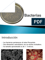 Bacterias 2013