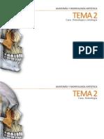 Tema 2_ Osteología y miología_ Cara