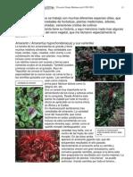 Agricultura Ecológica - Proyecto De Granja Permacultura - Pag 15-25