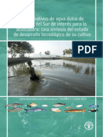 Peces Nativos Agua Dulce America Sur Interes Acuicultura Fao