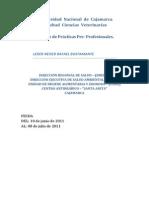 Universidad Nacional de Cajamarca Informe Final