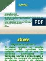Agenda Estres 2. DR Kuylen