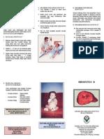 Leaflet Hepatitis b