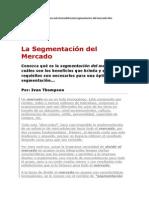 segmentaion de mercado.docx