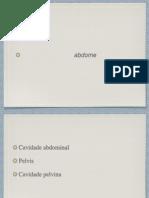 Anatomia Topografica Abdome Alunos
