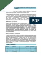Tema de Ponencia Coloq Pucp_ Avance_ Esquema Coloquio 09-09-13