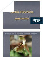 Teoría Evolutiva - Adaptación