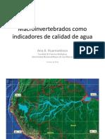 11. Macroinvertebrados, Indicadores de Calidad de Agua - Ana Huamantinco