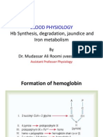 Hb Synthesis, Degradation, Jaundice, Iron Metabolism by Dr. Roomi