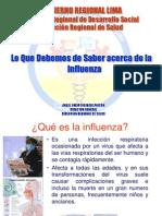 Presentacion Influenza Tipo a h1n1 Publico General