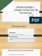 Biotecnología y  Biología Molecular de Levaduras.pptx