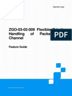ZGO-03!02!009 Flexible Priority Handling of Packet Data Channel FG 20101030
