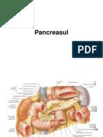 Pancreas Ul