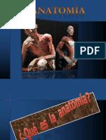 Anatomia Generalidades