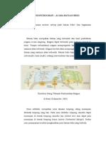 Paper Petrografi