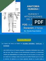 huesosyarticulacionesdeltronco-110411235844-phpapp02