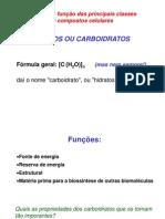 Aula 8 - Carboidratos
