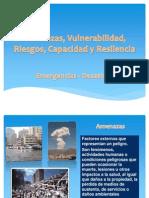 Amenazas, Vulnerabilidad, Riesgos, Capacidad y