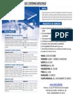 Malla Curricular Comunicaciones m Viles y Sistemas Satelitales