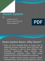 Steam System