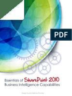 SharePoint2010 BI Capabilities
