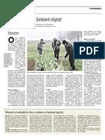 Λαχανόκηποι Αγγελιοφόρος 12.3.2014