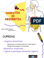 Proiect Biologie (Digestia Si Absorbtia)AndreeaBadea
