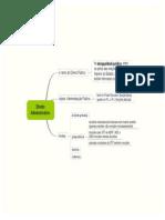 01-Direito Administrativo.mmap.pdf
