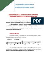 Exercitiile Muzicale