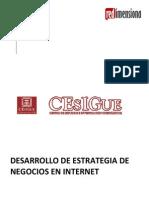 CESIGUE - Estrategia en Internet - Junio 2011