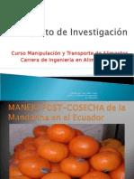 Postcosechamandarina