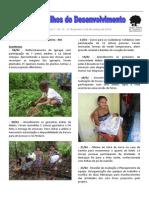 Nos Trilhos do Desenvolvimento - Ano 1 - nº 11