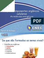 Cap. 3 Carboidratos e Lipidios