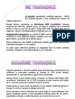 11.Organisme transgenice