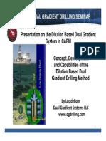 DGD Milan Seminar Presentation