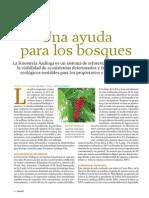 Foresteria Analoga - Una Ayuda Para Los Bosques