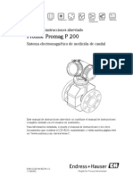 Endress Hauser P200