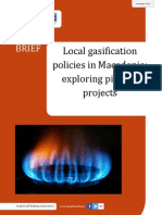 Local gasification policies in Macedonia