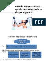Hipertension Arterial Patologia II