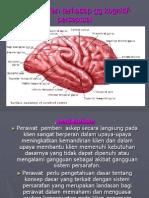 gangguan fungsi kognitif