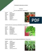 Taksonomi Tumbuhan Dan Hewan