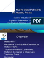 Removal of Heavy Metal Pollutants by Wetland Plants