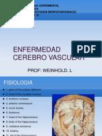Presentacion Enfermedad Cerebrovascular Concurso