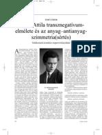 József Attila - Transznegatívumelmélete és az anyag-antianyagszimmetria(sértés)