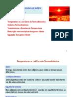 AulaTeo01 - temperatura e gas ideal.pdf