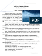 Raining Cats and Dogs Third Grade Reading Comprehension Worksheet