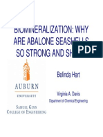 Biomineralization Presentation 0713 Version