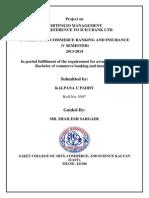 Banking Portfolio Management