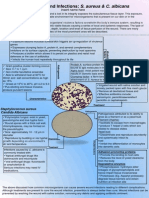 Microbio Poster